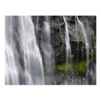 Los E.E.U.U., WA, el Monte Rainier NP, caídas de Postales