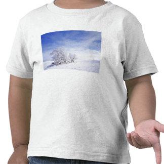 Los E.E.U.U., Washington, área de Palouse, negro Camisetas