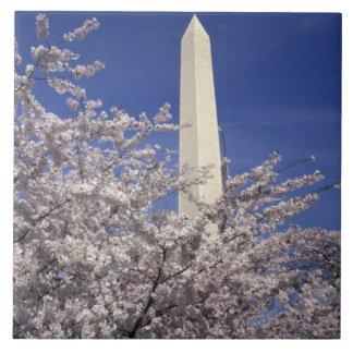 Los E.E.U.U., Washington DC. Festival de la flor d Azulejos Cerámicos