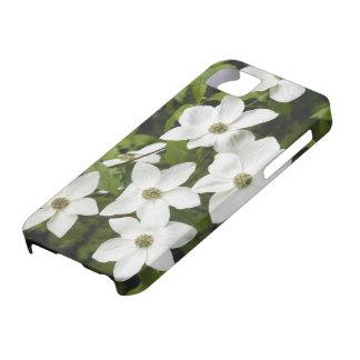 Los E.E.U.U., Washington, Dogwood pacífico, Cornus iPhone 5 Protectores
