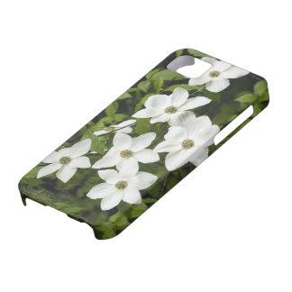 Los E.E.U.U., Washington, Dogwood pacífico, Cornus iPhone 5 Case-Mate Carcasas
