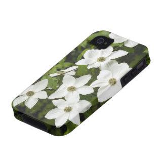 Los E.E.U.U., Washington, Dogwood pacífico, Cornus Vibe iPhone 4 Funda