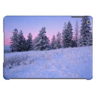 Los E.E.U.U., Washington, el condado de Spokane, Carcasa iPad Air