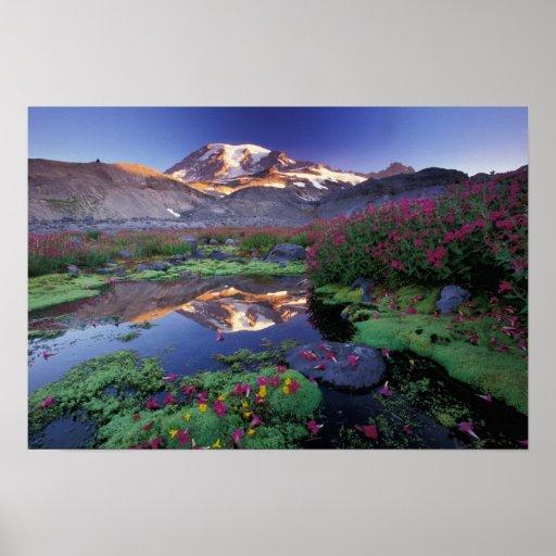 Los E.E.U.U., Washington, el Monte Rainier NP, sal Póster
