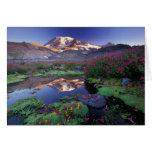 Los E.E.U.U., Washington, el Monte Rainier NP, sal Tarjeta De Felicitación