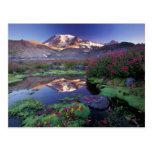 Los E.E.U.U., Washington, el Monte Rainier NP, Tarjetas Postales