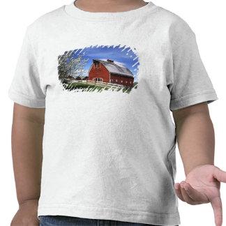 Los E.E.U.U., Washington, Ellensburg, granero Camisetas