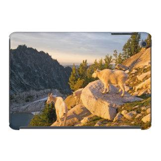 Los E.E.U.U., Washington, gama 4 de la cascada Carcasa Para iPad Mini Retina