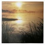Los E.E.U.U., Washington, isla de López, niebla de Azulejo