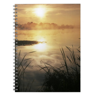 Los E.E.U.U., Washington, isla de López, niebla de Cuadernos