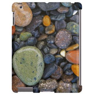 Los E.E.U.U., Washington, isla de López, playa de Funda Para iPad