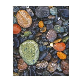 Los E.E.U.U., Washington, isla de López, playa de Impresiones En Lona Estiradas
