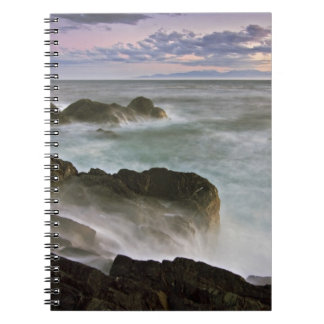 Los E.E.U.U., Washington, islas de San Juan.  Desp Note Book