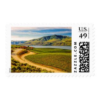 Los E.E.U.U., Washington, lago Chelan. Viñedos de Estampillas