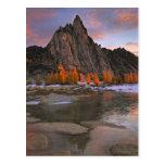 Los E.E.U.U., Washington, montañas de la cascada.  Postal
