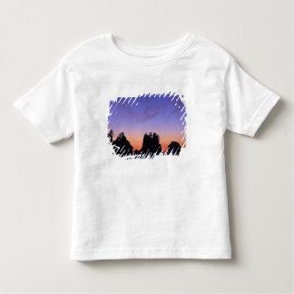 Los E.E.U.U., Washington, parque nacional Camisas