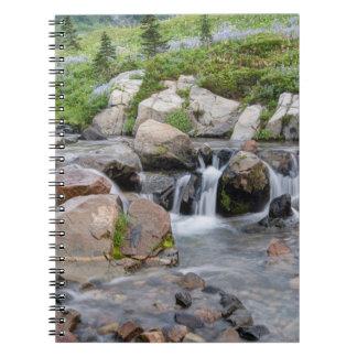 Los E.E.U.U., Washington, parque nacional del Libros De Apuntes Con Espiral