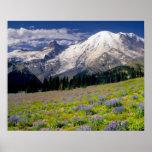 Los E.E.U.U., Washington, parque nacional del Mont Póster