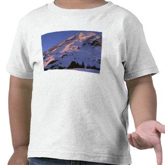 Los E.E.U.U., Washington, parque nacional del Camisetas
