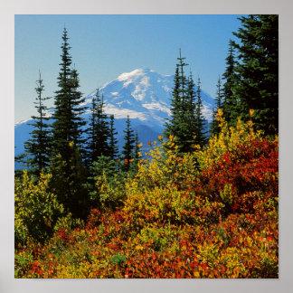 Los E.E.U.U., Washington, parque nacional del Póster