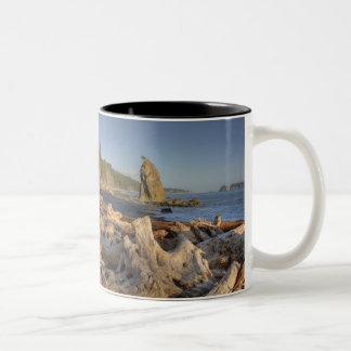 Los E E U U Washington parque nacional olímpico Taza De Café