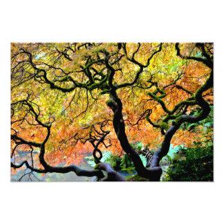 Los E E U U Washington Seattle jardín de Kubot Arte Con Fotos