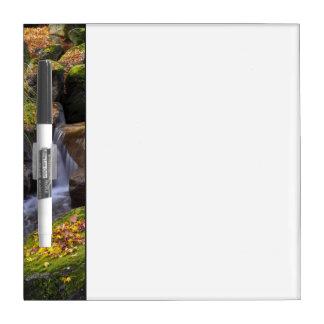 Los E.E.U.U., Washington, Seattle Pizarras Blancas