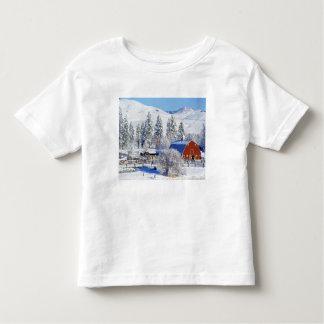 Los E.E.U.U., Washington, valle de Methow, Camisas