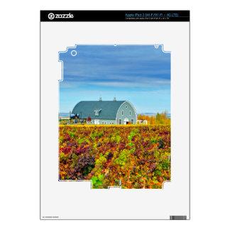 Los E.E.U.U., Washington, Walla Walla. Cala de la iPad 3 Pegatinas Skins