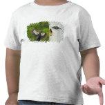 Los E.E.U.U., Washington, Yakima. Varón plisado Camisetas