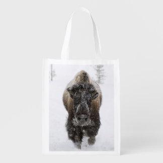Los E.E.U.U., WY, Yellowstone NP, bisonte american Bolsa De La Compra