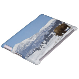 Los E.E.U.U., WY, Yellowstone NP, bisonte del biso Funda Para iPad