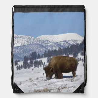 Los E.E.U.U., WY, Yellowstone NP, bisonte del biso Mochila