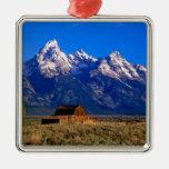Los E.E.U.U., Wyoming, parque nacional magnífico Adorno Navideño Cuadrado De Metal