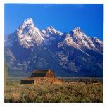 Los E.E.U.U., Wyoming, parque nacional magnífico d Teja