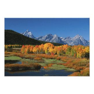 Los E.E.U.U., Wyoming, parque nacional magnífico d Fotografía
