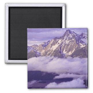 Los E.E.U.U., Wyoming, parque nacional magnífico d Iman De Nevera