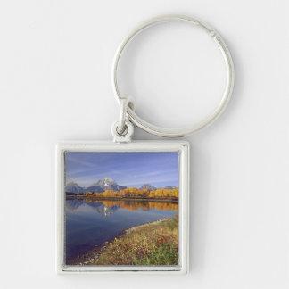 Los E.E.U.U., Wyoming, parque nacional magnífico d Llaveros