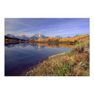 Los E E U U Wyoming parque nacional magnífico d Cojinete