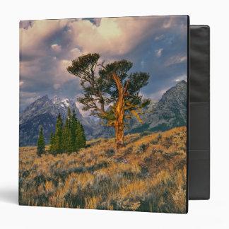 """Los E.E.U.U., Wyoming, Teton magnífico NP. La Carpeta 1 1/2"""""""