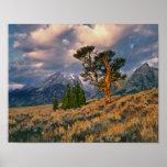 Los E.E.U.U., Wyoming, Teton magnífico NP. La sali Póster