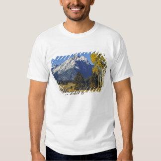 Los E.E.U.U., Wyoming, Teton magnífico NP. Ruta Camisas