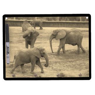 Los elefantes en llavero negro y secan al tablero tablero blanco