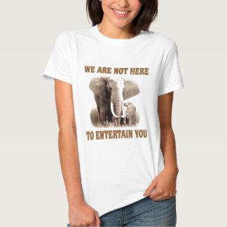 Los elefantes merecen respecto remeras