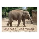 Los elefantes nunca olvidan su tarjeta del nombre  tarjeta personal