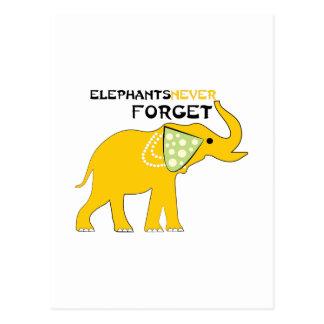 Los elefantes nunca olvidan postal