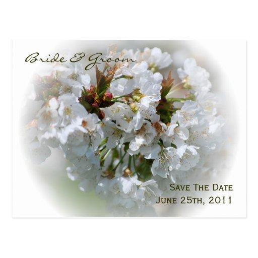 Los flores de Apple ahorran la postal de la fecha
