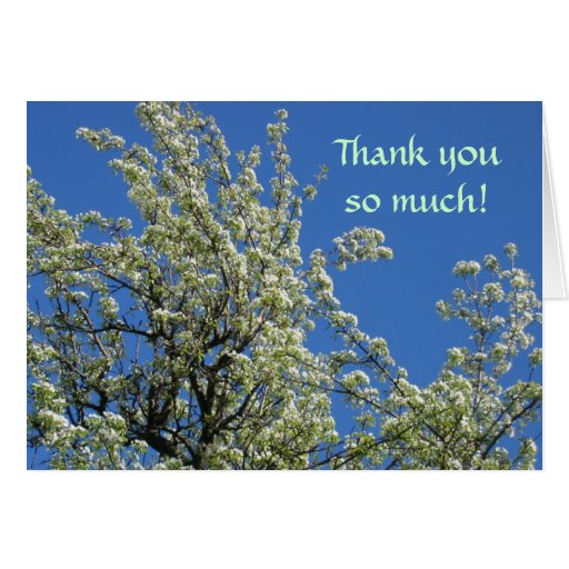 Los flores de la primavera le agradecen tarjeta pequeña