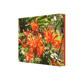 Los flores florales anaranjados envolvieron la lon impresión en lona