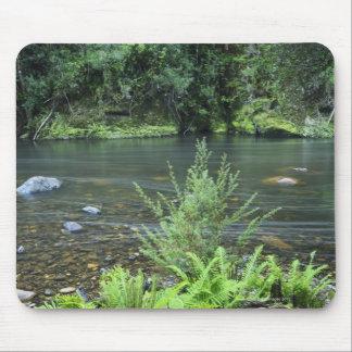 Los flujos del río de Hellyer pacífico con a Alfombrillas De Ratones